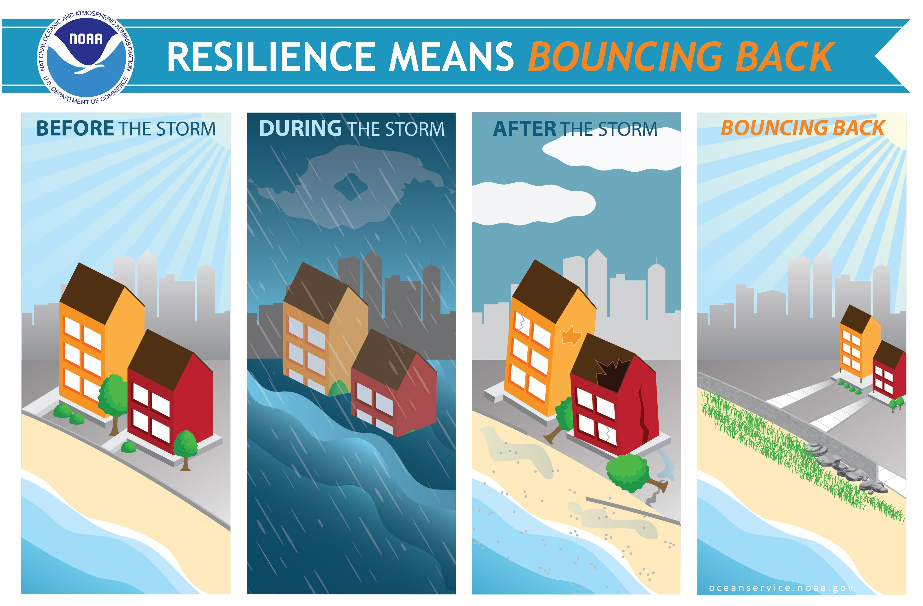Enhancing Coastal Resilience with Green Infrastructure